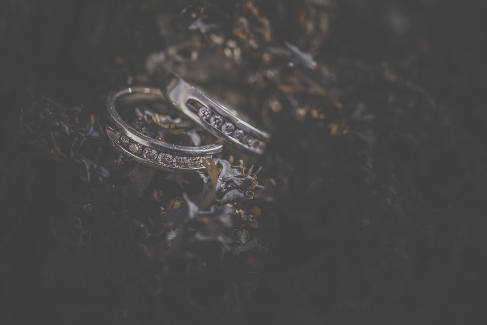 gay engagement ring
