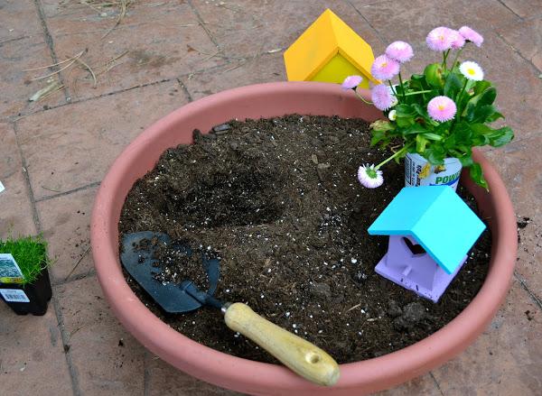 fairy garden 5.jpg
