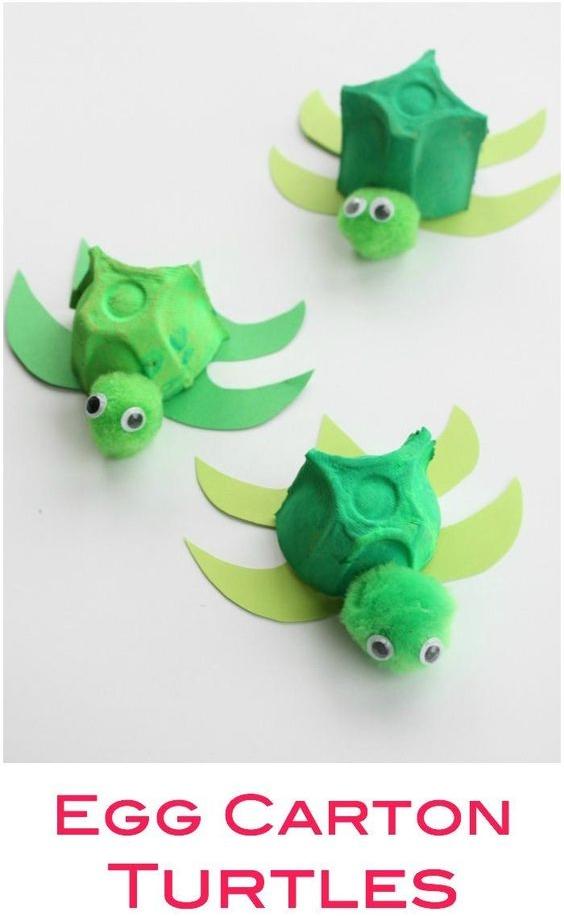 Egg Turtles from Wonder Kids
