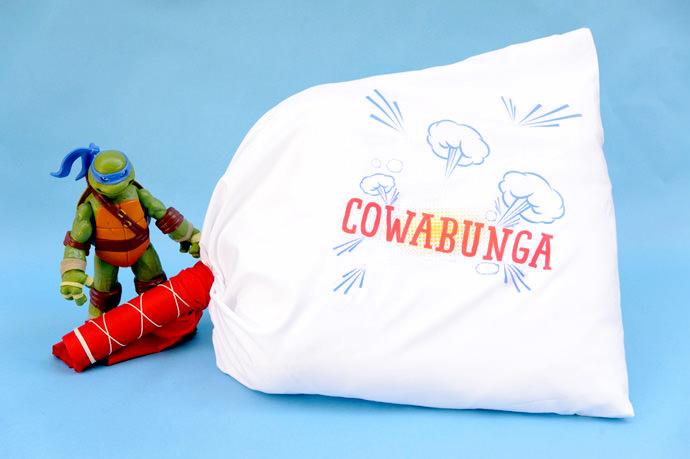 TMNT Pillow Fight
