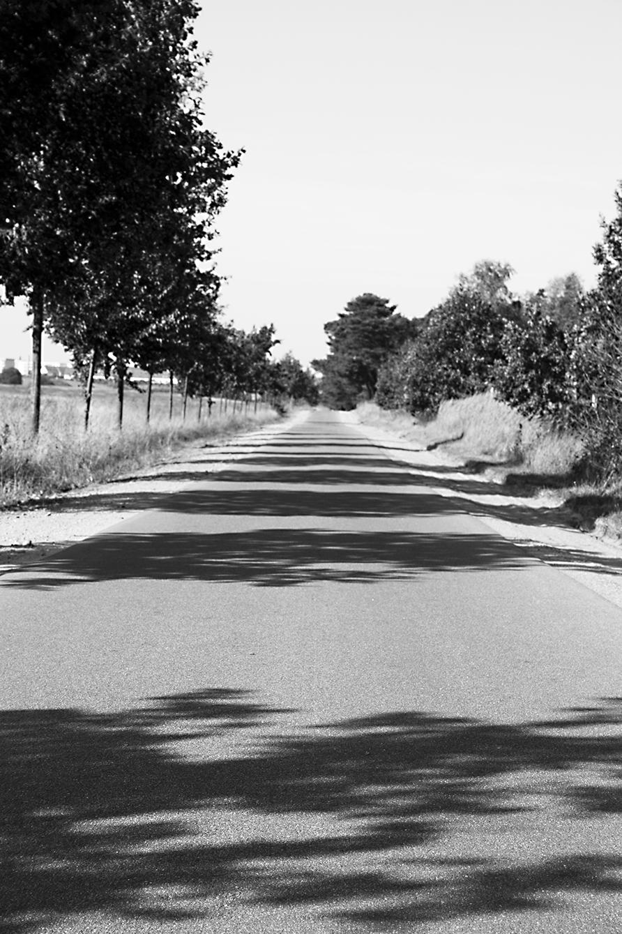 028_Schatten_2009.jpg
