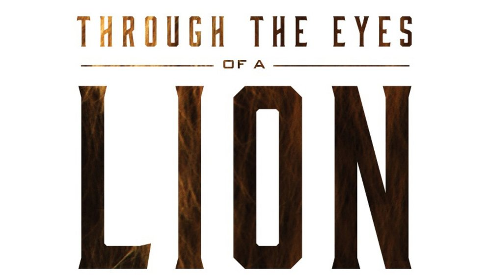 eyes of a lion web.jpg
