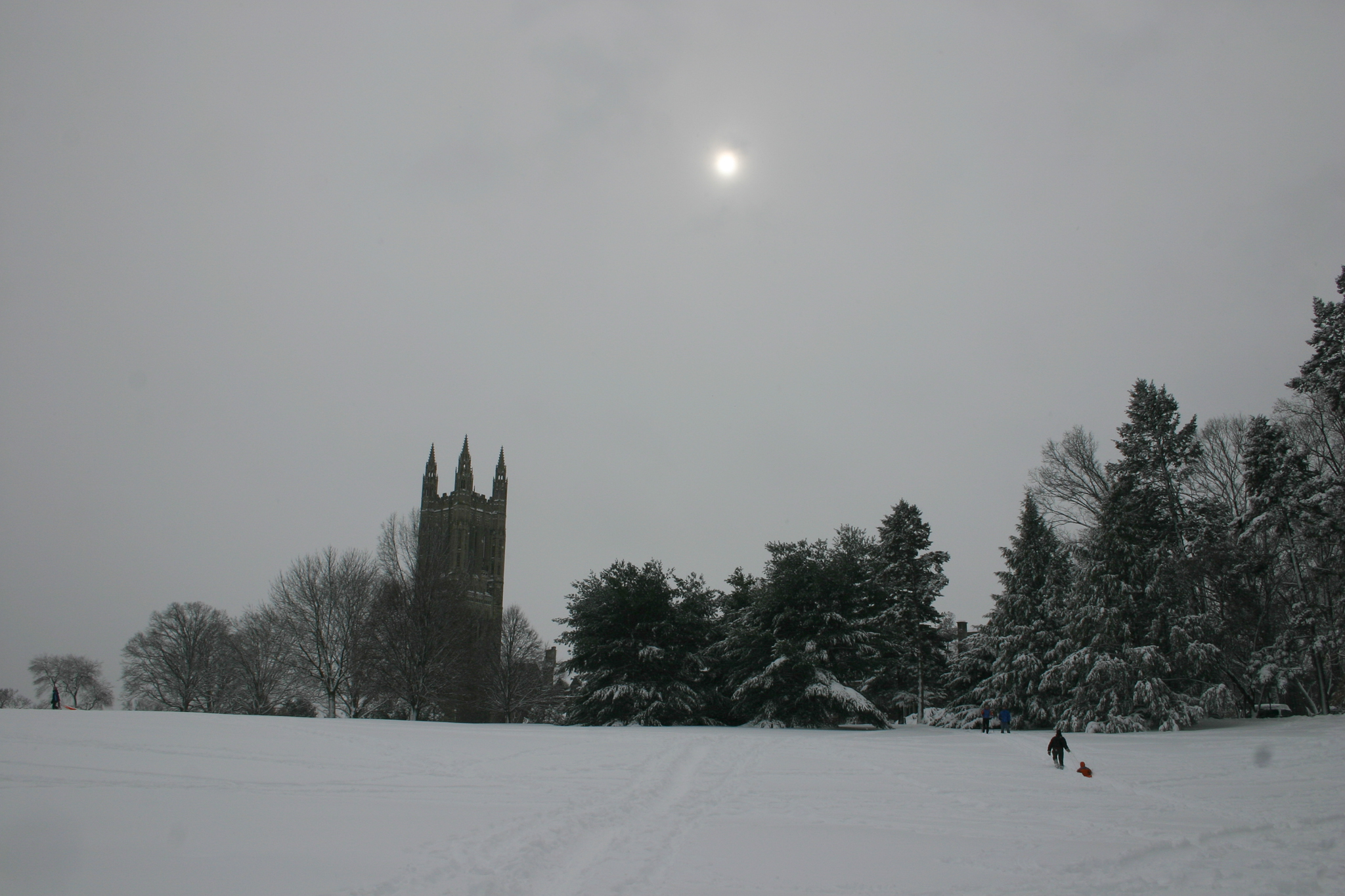 Princeton-holidays-winter