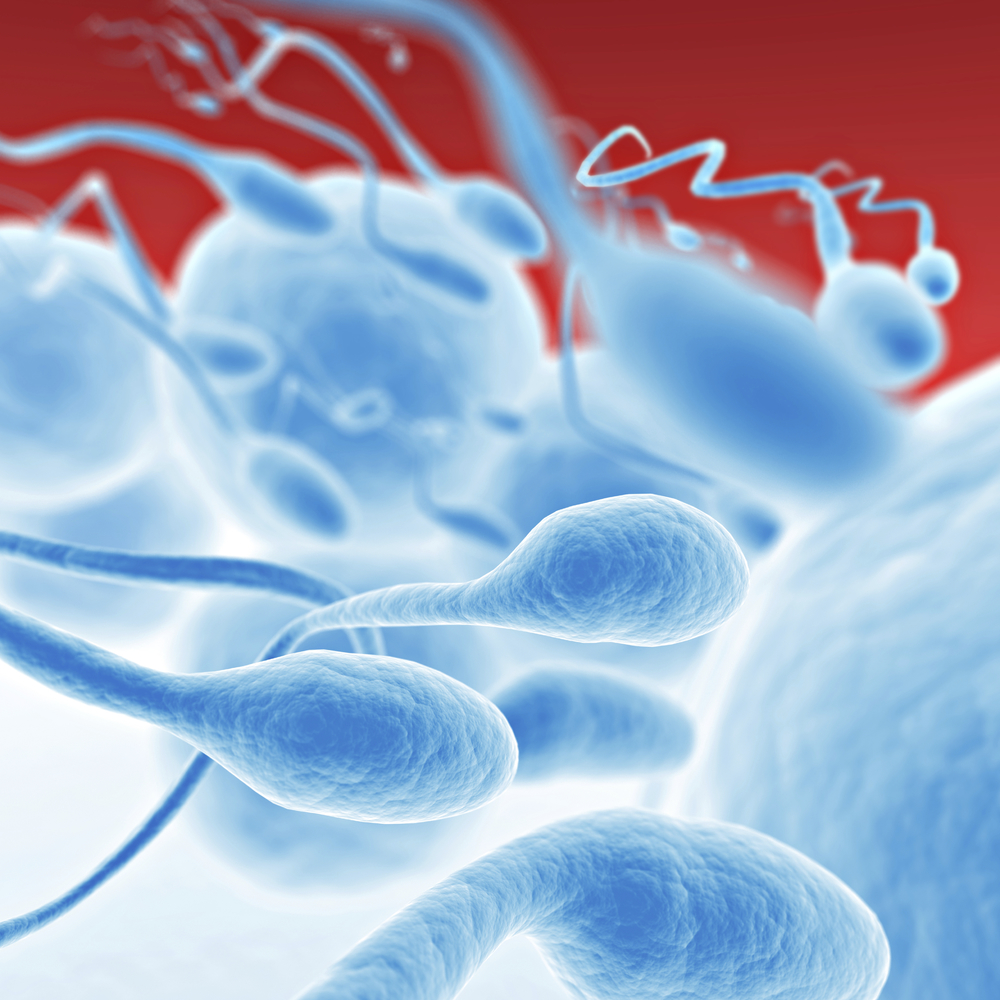 sperm-semen-testosterone-problems.jpg