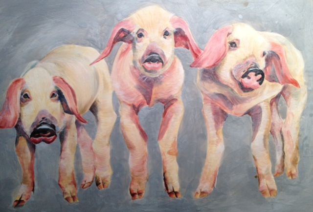 Three Little Pigs 2014