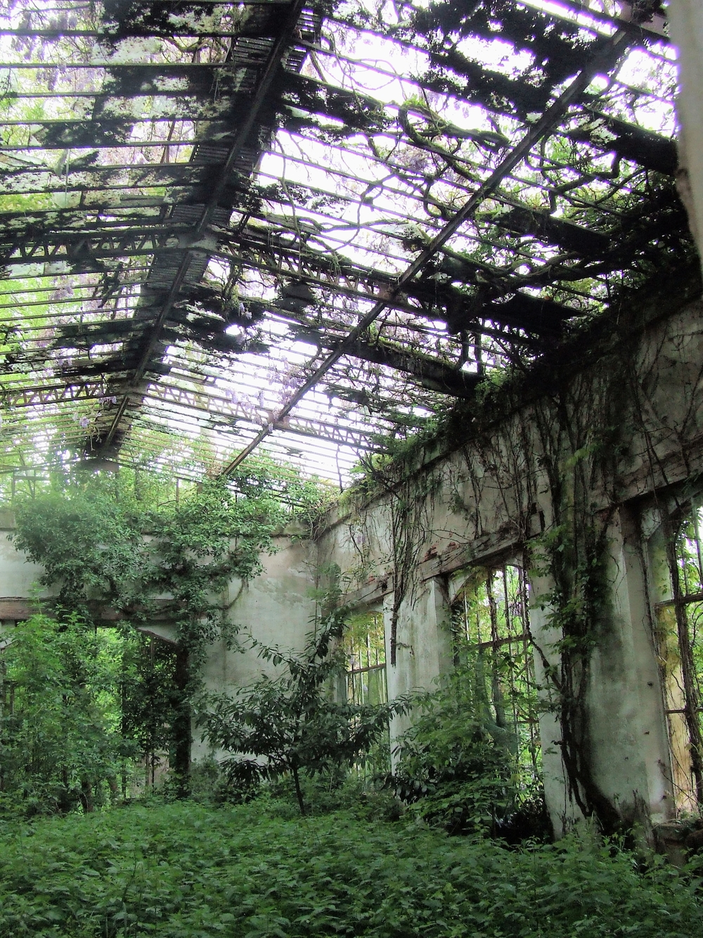 L'Orangerie Ruin at a French Chateau