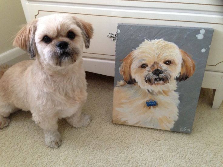 Chewie and His Portrait