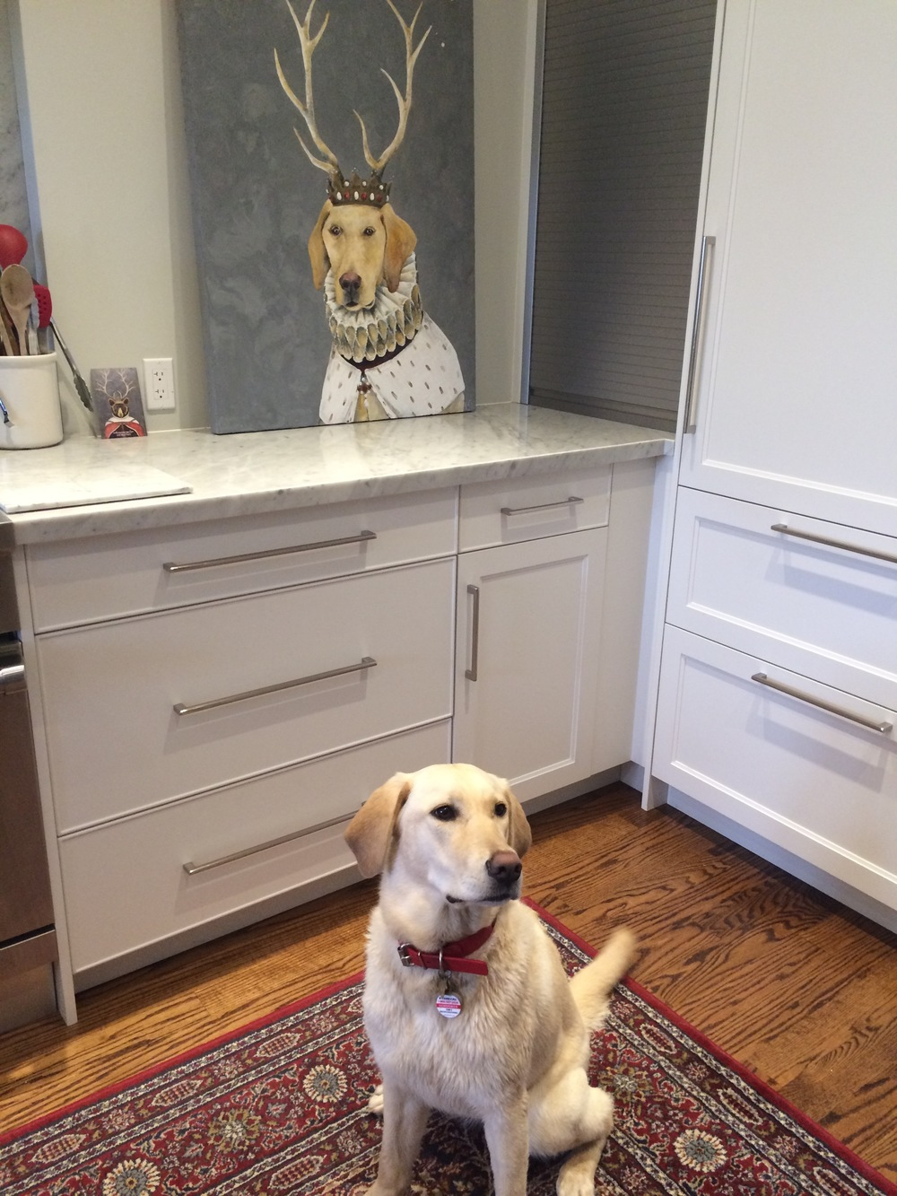 Here is the lovely Schooner posing with her portrait where it ill eventually hang in their kitchen....
