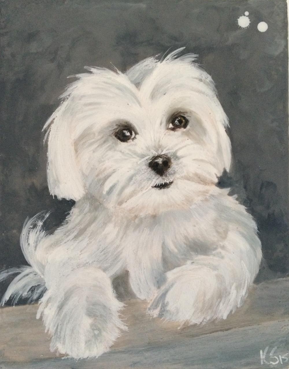 Minnie (le chien bizarre)