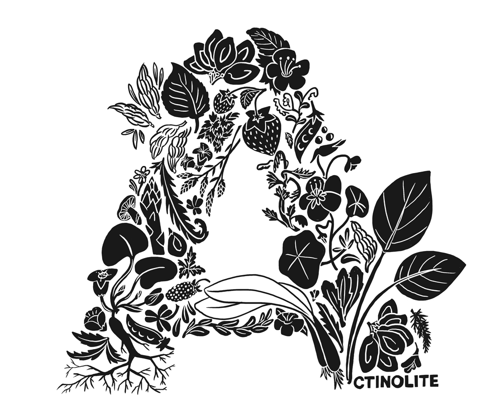 So fresh... - Actinolite Restaurant celebrates place and time in its considered and inventive use of local, season and sustainable Canadian ingredients.I spy: wild ginger, tayberries, spruce tips, birch leaves and ramps...how many wild and foraged items can you spot?