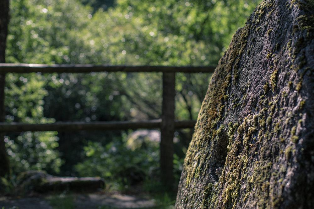 Moinho Verde-18.jpg