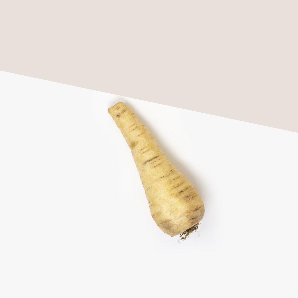 A simple, minimalist, contemporary, fine art photograph of a parsnip