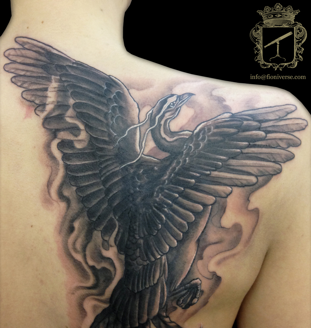 Phoenix_ohne_Schweif SCHWEIF WEG!!!!.jpg