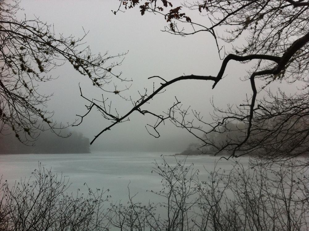 Cliff Pond in Brewster