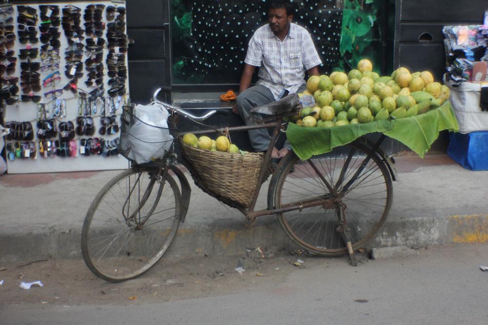 Fruit Vendor Bicycle