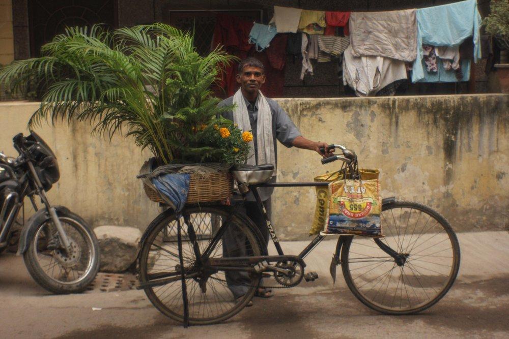 Plant_Vendor.jpg