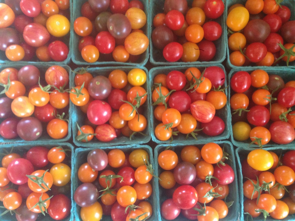 Rainbow of cherry tomatoes!
