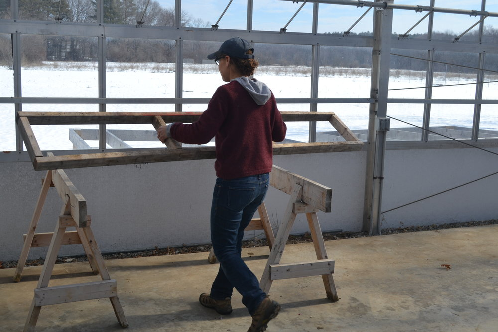 Melissa begins to set up the greenhouse for seeding in March.
