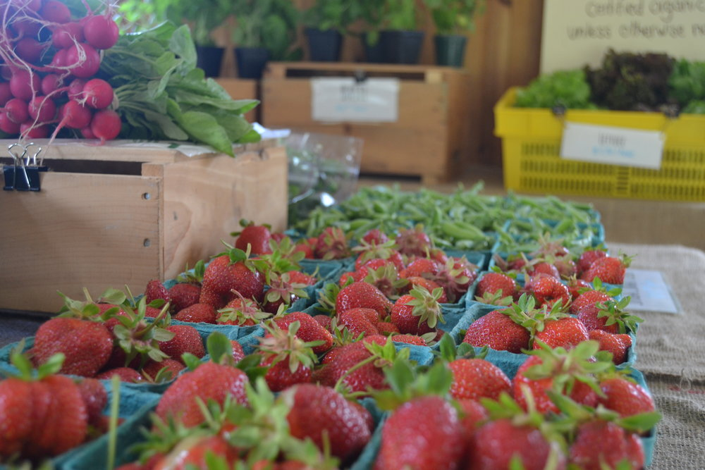 It is sugar snap pea and strawberry season in the farm store and CSA pick-your-own fields.