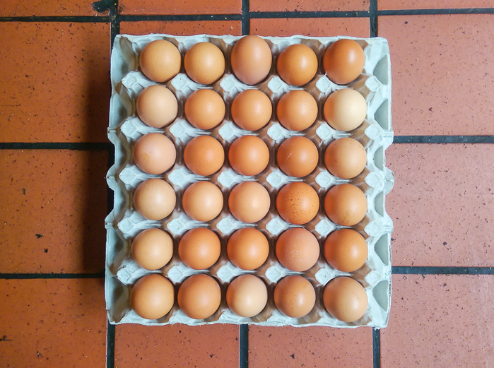 Biodynamic eggs from Brambletye in Sussex