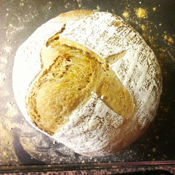 First coffee sourdough. A little wonky but with a nice roasted coffee aroma