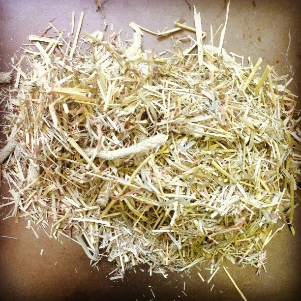 Roasted meadow hay