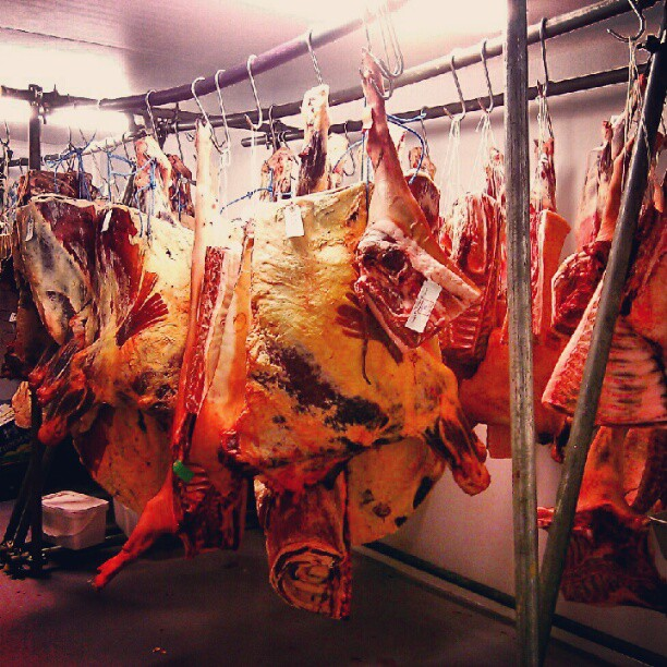 One of the best rooms in London. The meat fridge at The Butchery in Bermondsey @naththebutcher