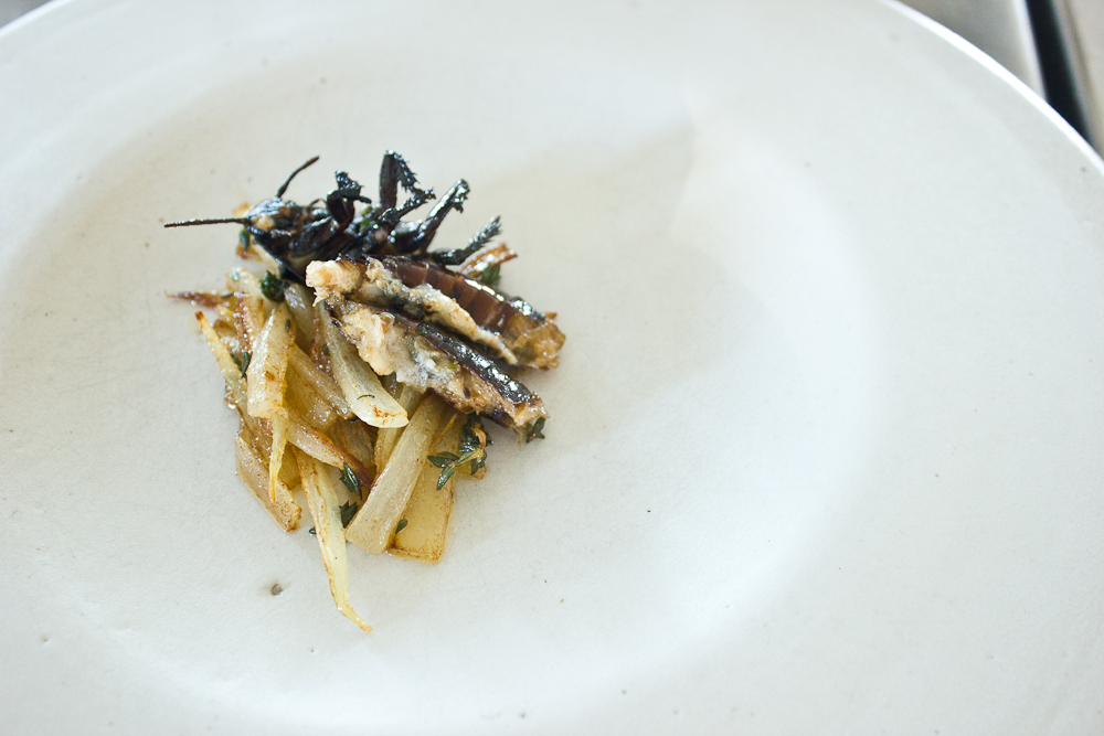 A Hissing Cockroach, kindly donated by Copenhagen Zoo, blanched and fried with butter, onions and thyme by Ben Reade at Nordic Food Lab. The flesh (if we can call it that) is somewhat similar in texture to overcooked brown crab meat, and the taste is slightly sweet, although obfuscated rather by the onions. As far as breakfasts go, it is unequalled in adventurousness.  Check out the video, edited by Anna Caballero