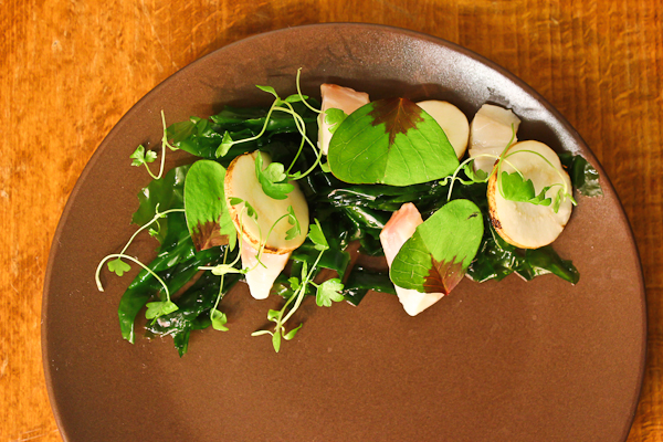 Sea bass, oxalis, chervil root, sea lettuce