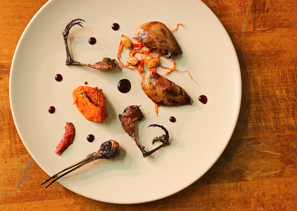 Snipe, pumpkin, sloes