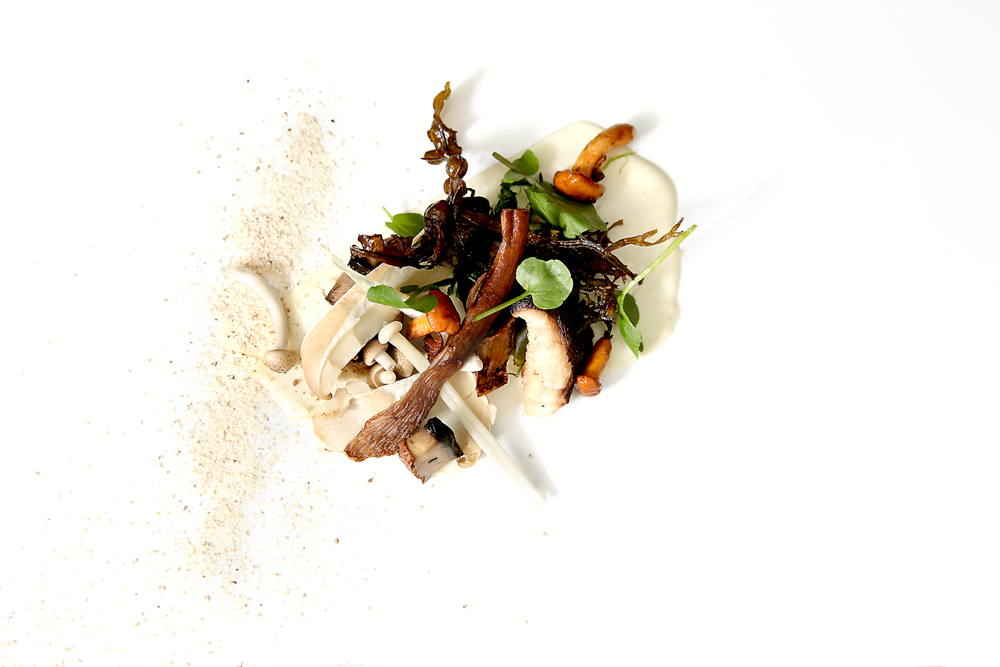 Mushrooms, seaweed, horseradish