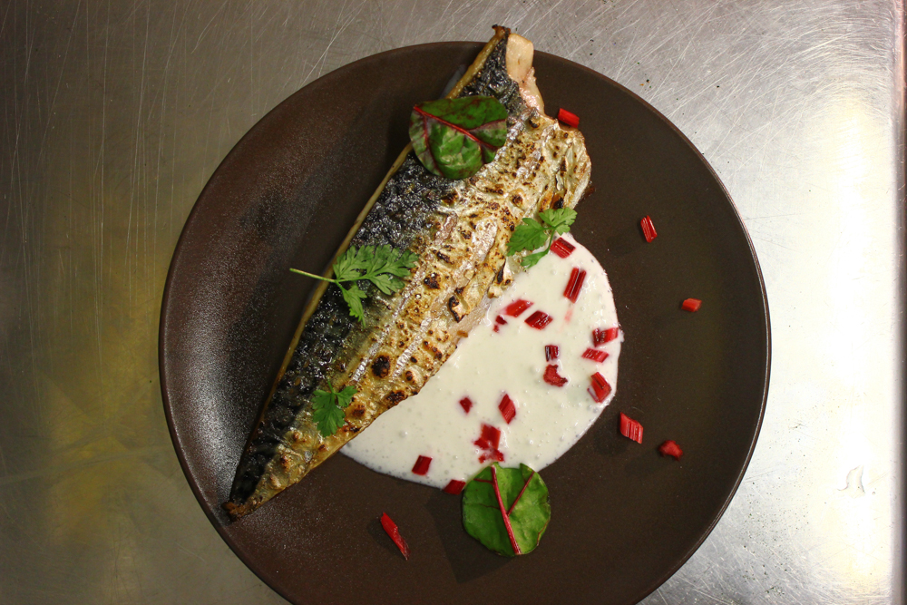 Grilled mackerel, buttermilk, sorrel