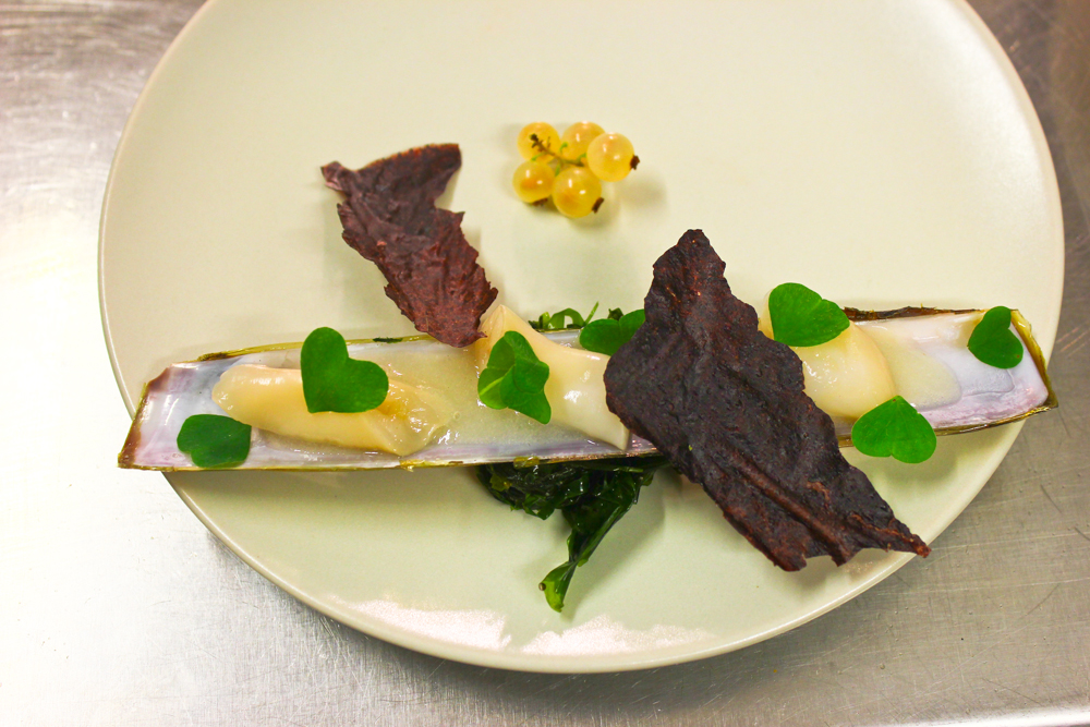 Razor clam, black rice, white currants, wood sorrel