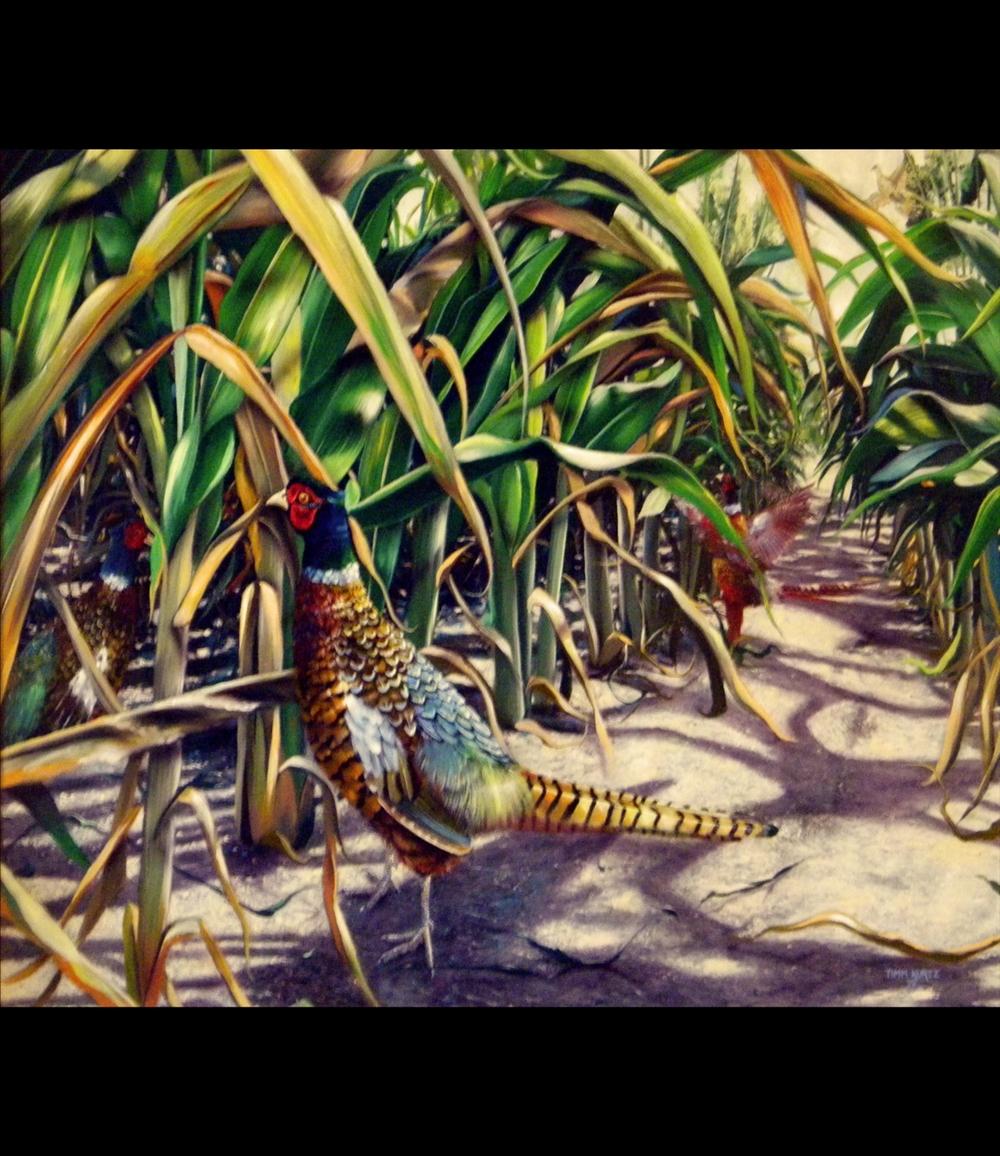 pheasants_blk.jpg