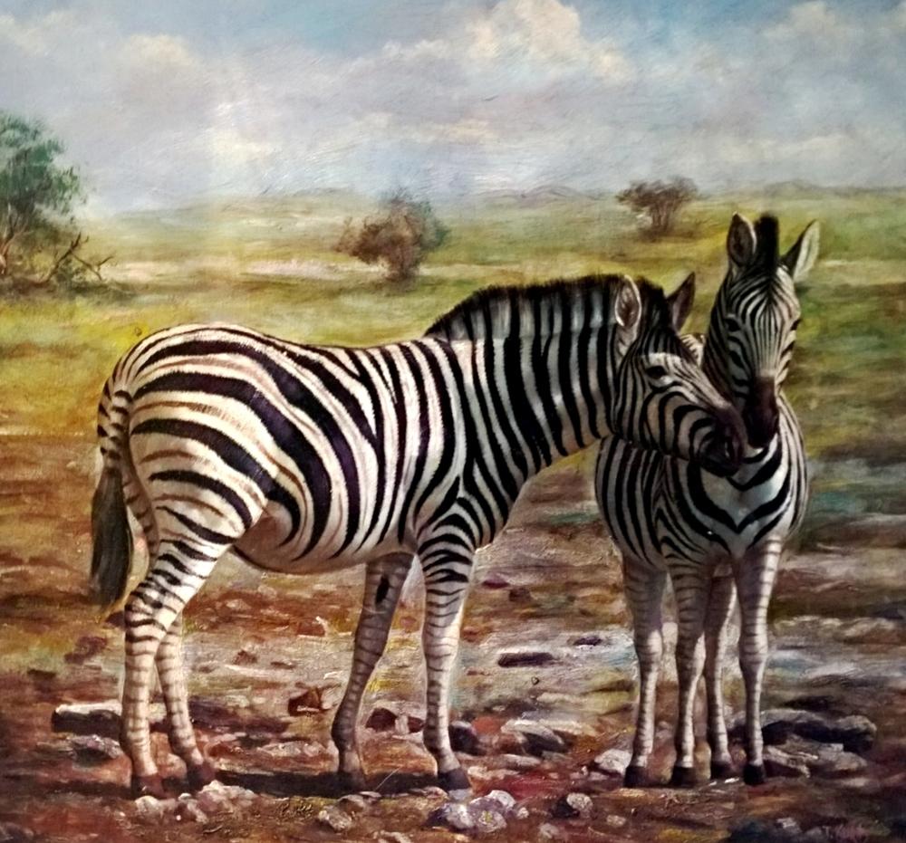 zebras_kallahari.jpg