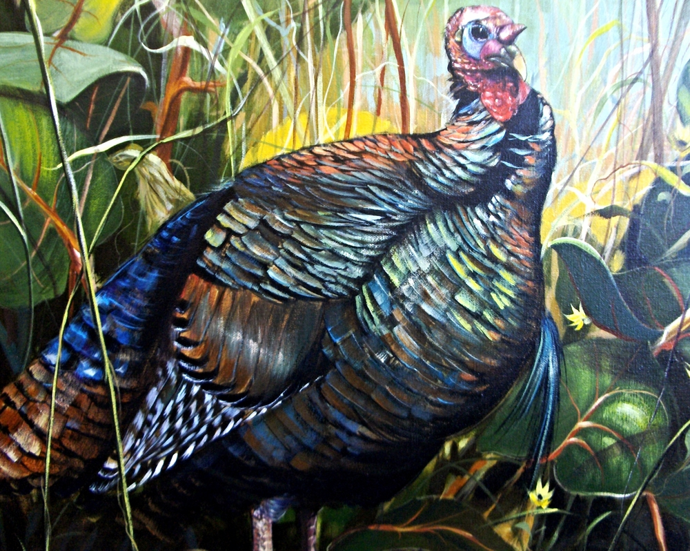Osceola Turkey.jpg