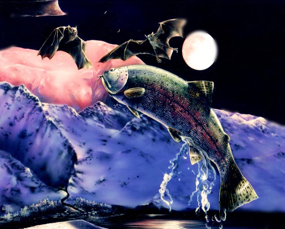 jumping trout_arctic_no bk.jpg