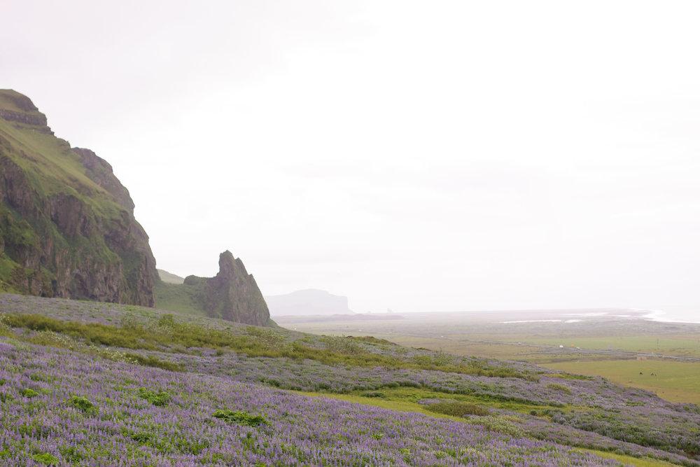 Iceland67.jpg