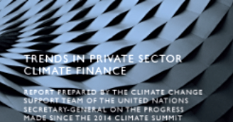 """Trends in Private Sector Climate Finance."" United Nations, October, 2015"