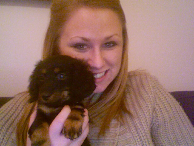 Meet little baby wiener dog Charlie! My boss' new puppy that is the cutest new addition to the city!