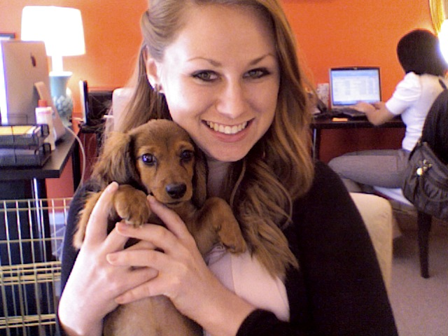 Meet Teddy,  Media Maison 's mascot. Not too bad to work with this little guy each day!
