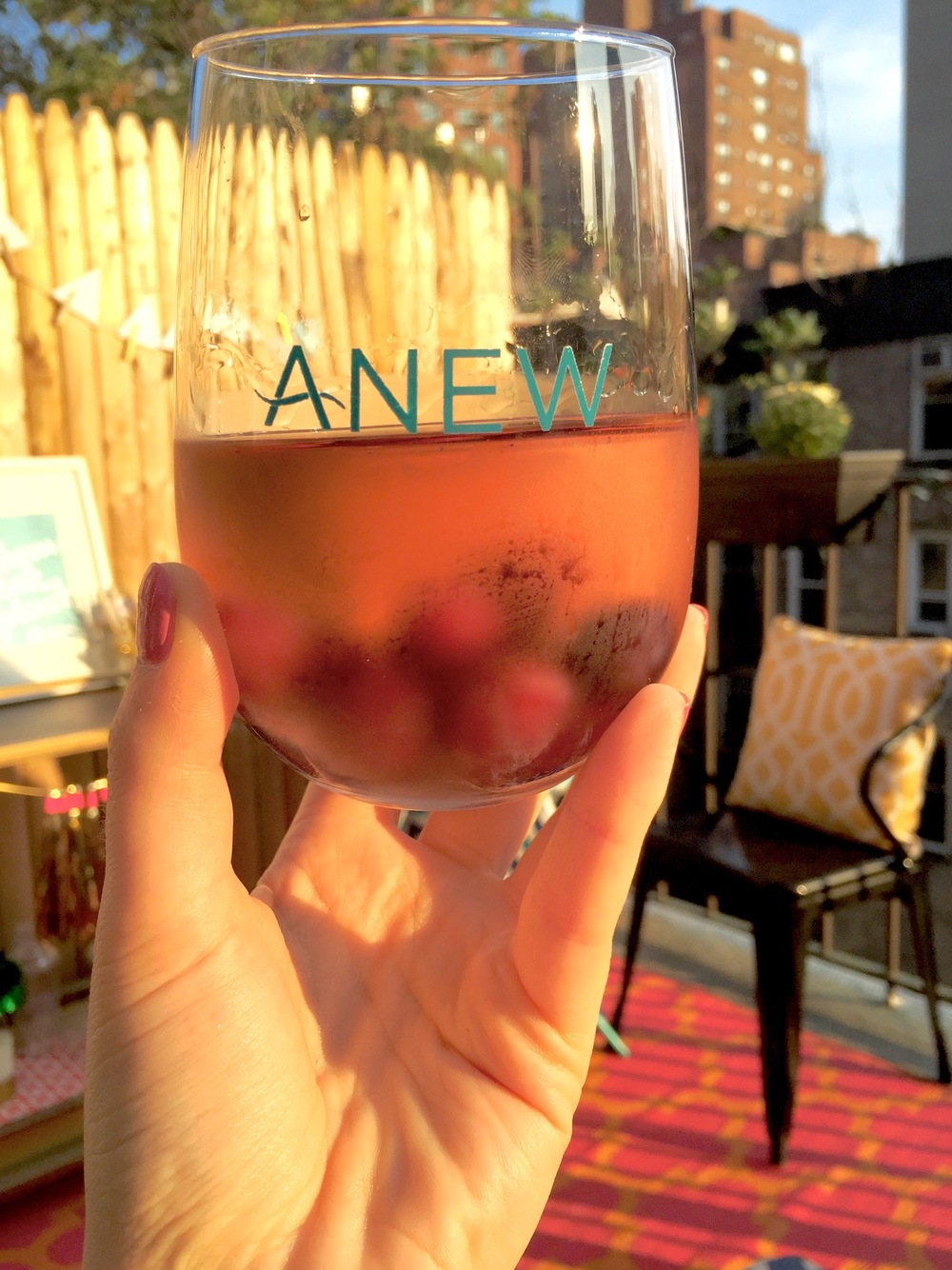 Anna Osgoodby NYC Living :: ANEW Summer