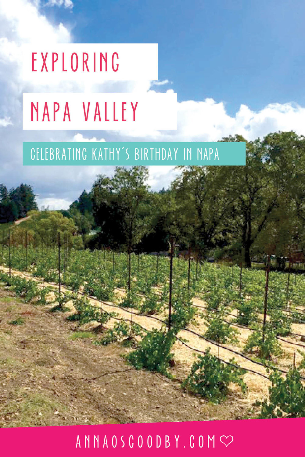 Anna Osgoodby Life + Design :: Exploring Napa Valley