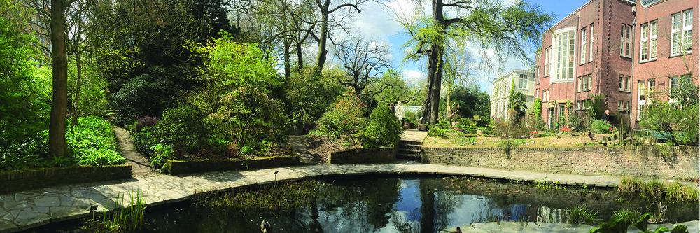 AMS Botanical Garden.jpg