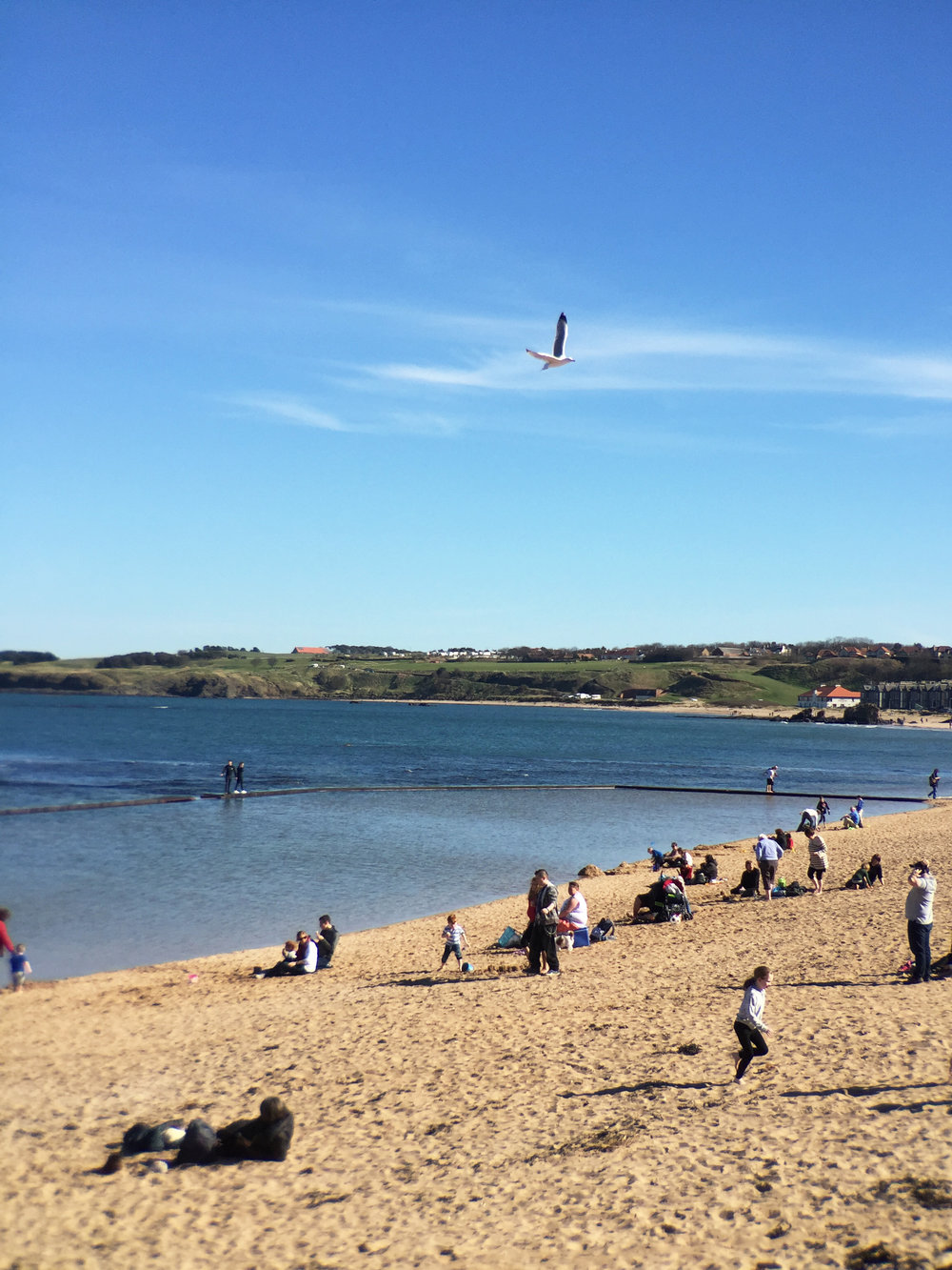 Beaches get plenty of use in Scotland, despite the cold water.