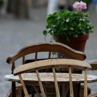 Cafe culture ii