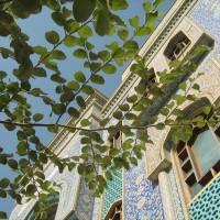 Leafy Mosaic mosque i
