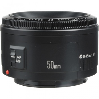 Canon's 50mm ƒ/1.8 - a bargain at under £100