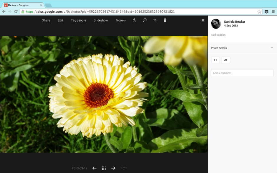 The 'Edit' button should be appearing on a G+ screen near you soon