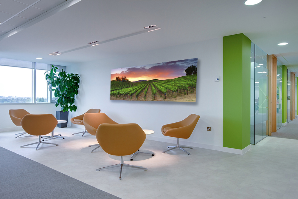 """Monte Del Oro"" as a 20x60 metal print with a floating hanger adds a nice earthly touch to any professional office space..."